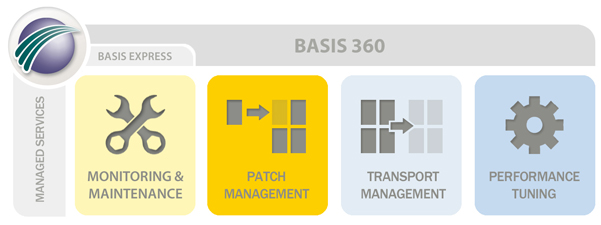 SAP Managed Services Overview