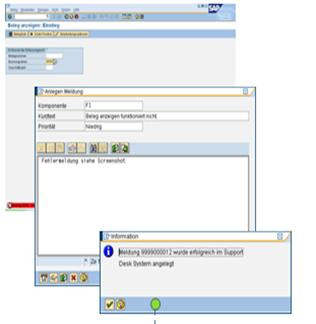 SAP SOLMAN (Solution Manager) Screens for Service Desk